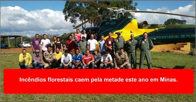 Incêndios florestais caem pela metade este ano em Minas.