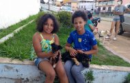 Com castração do último sábado, mutirões chegaram a 300 animais atendidos em Prados