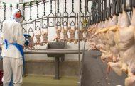 Com contrapartida da Prefeitura, Atalaia Alimentos vai gerar 100 novos empregos em Barroso