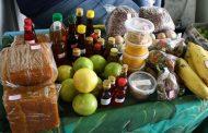 Projeto visa ajudar produtores e impulsionar turismo rural em Prados e região