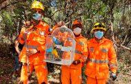 Bombeiros resgatam arara em Prados