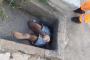 Bombeiros resgatam homem entalado em bueiro