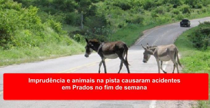 Imprudência e animais na pista causaram acidentes em Prados no fim de semana