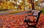Sob influência de El Niño, começa amanhã o outono