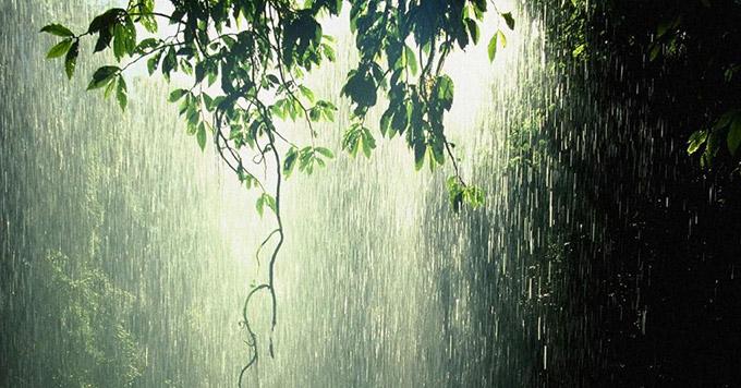 Sol-e-chuva