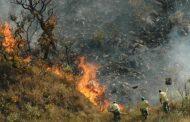 Governo de Minas vai reforçar prevenção e combate a incêndios florestais